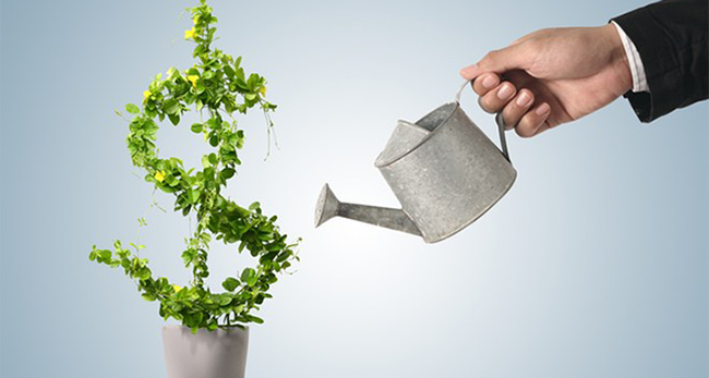 Hãy theo đuổi tầm nhìn, đừng theo đuổi tiền bạc