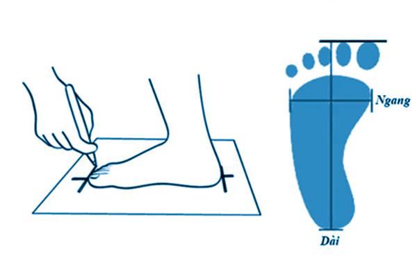 Hướng dẫn cách đo bàn chân chọn size giày